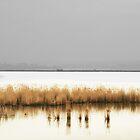 Reeds Flying By  by Nikolay Semyonov