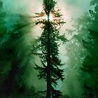 Green World by Beatrix M Varga