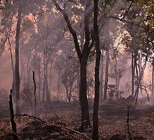 Bushfire by Kym Smitt