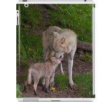 Arctic Wolf And Pup iPad Case/Skin