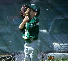 Outfield Concentration by tserio