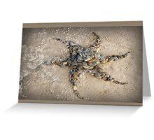 Sea Star Sculpture Wategos Beach Byron Bay Greeting Card