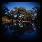 Holga madness.... little boat in daniland by Juilee  Pryor