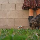 Mud Puddles & Dandelions by gracelouise
