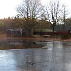 Winter Lake by ienemien