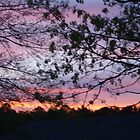 North Carolina Sunrises and Sunsets by Linda Bennett