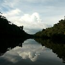 Amazon Reflections by Alex Evans