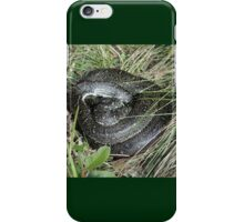 Let Sleeping Snakes Lie, Werrong Track, Australia 2012 iPhone Case/Skin