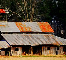 Old Barn With Dinner Bell Tower by madman4