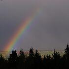 Rainbow by kookaburra