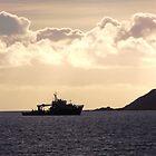 dusk silhouette by Lucan  Netley (LDN Photoart)