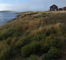 Settlement, New Island by John Douglas