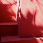 Pink by Elizabeth  Dew