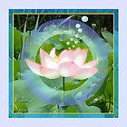 Lotussendsmessagebubbles... blip!...blip.. blip! by Roland Schicht