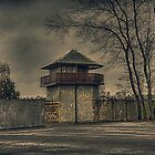Leftovers of a Nazi concentration camp near Berlin by Nicole W.
