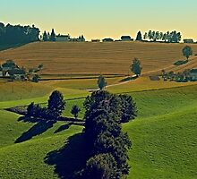 Autumn fields panorama | landscape photography by Patrick Jobst