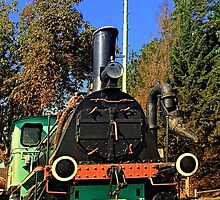 Historic steam train, abandoned | transportation photography by Patrick Jobst