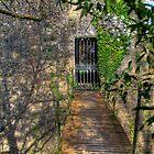 Footbridge at Birr Castle, County Offaly Ireland by Mark O'Toole