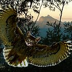 Silent and on Pussy Wings a Meowl zooms in... by Roland Schicht