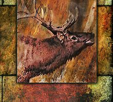 Bull Elk by William Martin
