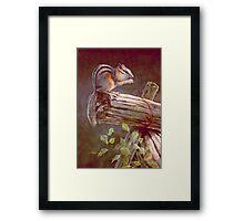 CHIPMUNK by SHARON SHARPE Framed Print