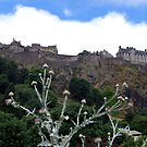 Edinburgh Castle by Linda More
