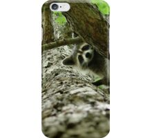 Taking Tree Climbing to the Next Level iPhone Case/Skin