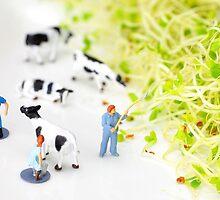 Happy Farm II by Paul Ge