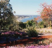 Canning River viewed from Kings Park by georgieboy98
