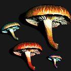 Mushrooms? Mushrooms. by LastLittleBird