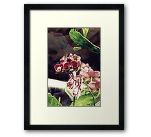 Turn To The Left Framed Print