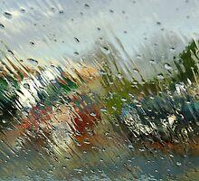 Sudden storm by M G  Pettett