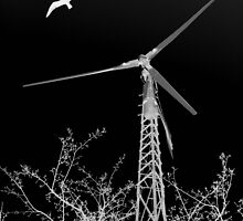 our new wind generator ... by SNAPPYDAVE