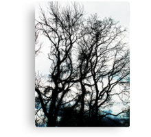 leave me at the tree Canvas Print