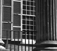 Randolph Hall Columns & Shutters by Benjamin Padgett