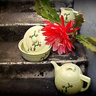 Cactus Flower With Vintage Hall Cactus China by Michael May