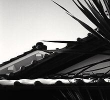 Japanese roof with snow, on the old Saya Kaido, Nagoya Japan by Jordi Vollom