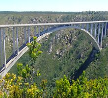 Blou Krans Bridge  by waylie23