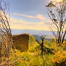 Shelter -  The  Blue Mountains HDR Series - Shipley Plateau  Sydney Australia by Philip Johnson