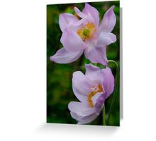 Pink Wind Flowers. Greeting Card