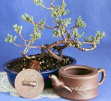 Bonsai Tree by mecab