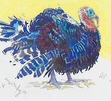 Turkey Bird by MikeJory