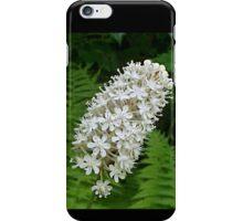 Stagger Grass lily (Amianthium muscaetoxicum) iPhone Case/Skin