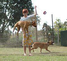 crazy dogs by Melanie Atkins