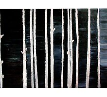 Betula by AngeM