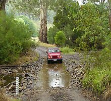 Wrangler crossing King River with magnificent gum tree behind by PhilA