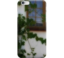 My Country Stoop...  iPhone Case/Skin