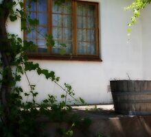 My Country Stoop...  by Qnita