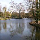River Avon  by Susie J