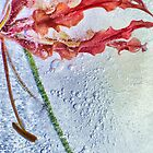 Gloriosa Lily in Ice, Edit C by NawfalNur